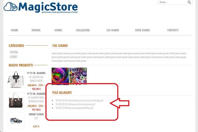 files e documenti: gestione e categoria  sessantaquattro.magicapp.net